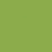 Ceramica patrat / dreptunghi, culoare kiwi, mat, consulta lista de preturi